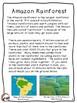Amazon Rainforest Activities 2nd, 3rd, 4th grade