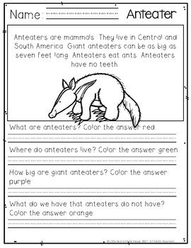 Rainforest Animal Comprehension Passages