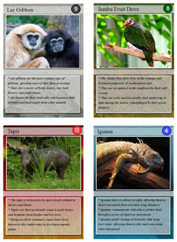 Rainforest Animal Trading Cards By Technology Integration