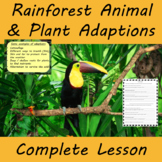 Tropical Rainforest Animal Adaptions and Plant Adaptions Complete Lesson
