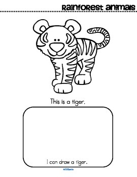 Rainforest Animals Activity Printables