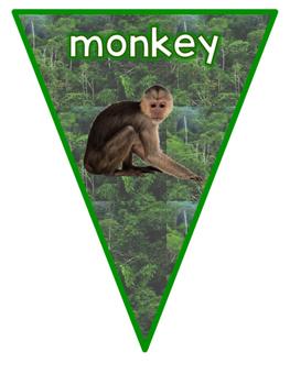 Habitats: Rainforest Animals Bunting Display