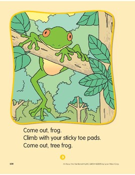 Rainforest Animals: Circle-Time Book