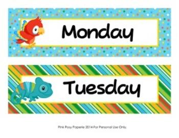 Rainforest Animals Classroom Decor Days of the Week Calend
