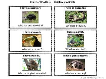 Rainforest Literacy Fun