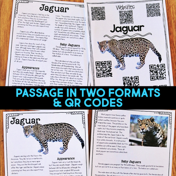 Rainforest Animals: Article, QR Code Research Page & Fact Sort BUNDLE