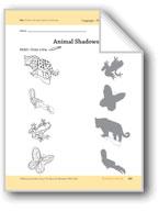 Rainforest Animals: Language and Math Activities