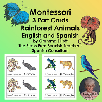 Rainforest Animals  Montessori 3 Part Cards  Spanish and English