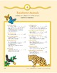 Rainforest Animals: Outdoor Activity and Dramatic Play