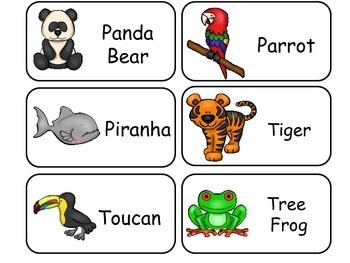 Rainforest Animals Picture Word Flash Cards. Preschool flash cards for children.