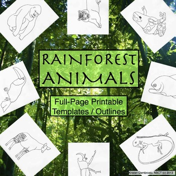 Rainforest Animals Printable Full-Page Outlines / Template