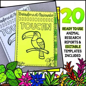 Rainforest Animals Research Project Flipbook!