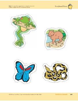 Rainforest Animals: Storyboard Pieces