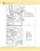 Rainforest Animals: Take-Home Book