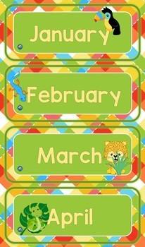 Rainforest Animals Themed Calendar Set