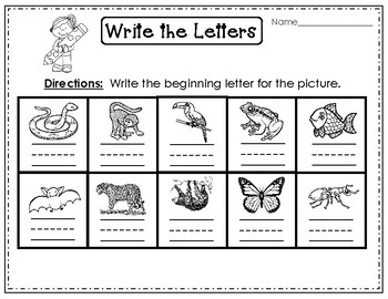 Rainforest Animals Unit for Early Elementary Grades