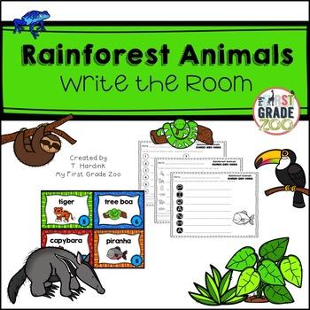 Rainforest Animals - Write the Room