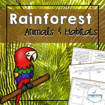 Rainforest Animals and Habitat