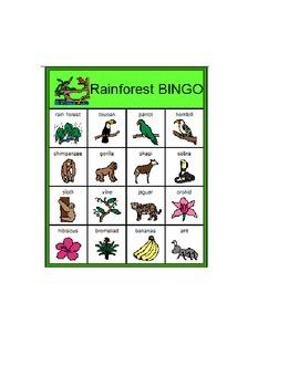 Rainforest BINGO