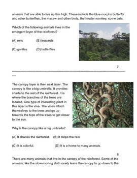 Rainforest Biome, Differentiated for low or non verbal students.