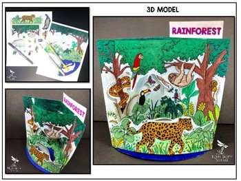 Rainforest Biome Model  - 3D