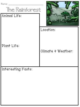 Rainforest Biome Organizer