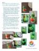 Rainforest Bird 3D Art Project