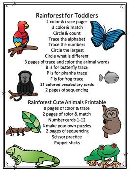 Rainforest Bundle 2