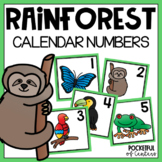 Rainforest Calendar Numbers