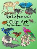 Rainforest Clip Art Semi - Realistic clips - Color  BW