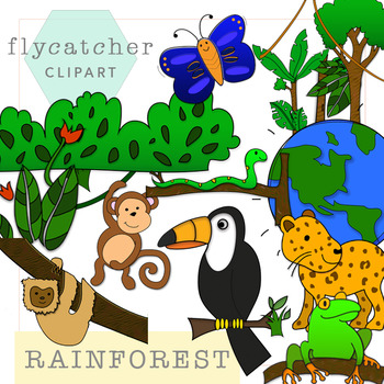 rainforest clipart by flycatcher clipart teachers pay teachers rh teacherspayteachers com rainforest clip art free rainforest clipart free