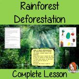 Rainforest Deforestation Complete Geography Lesson