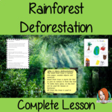 Rainforest Deforestation Complete Geography Lesson