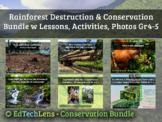 Rainforest Destruction & Conservation Bundle w Lessons, Ac