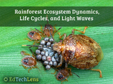 Rainforest Ecosystem Dynamics, Life Cycles, and Light Waves PDF