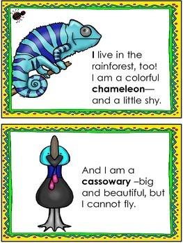 Rainforest Reader