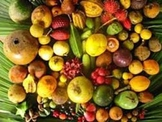 Rainforest Fruits Taste Test