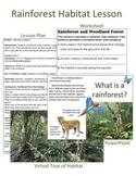Rainforest Habitat Lesson Plan and Power Point