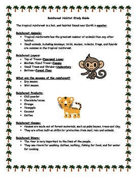 Rainforest Habitat Study Guide