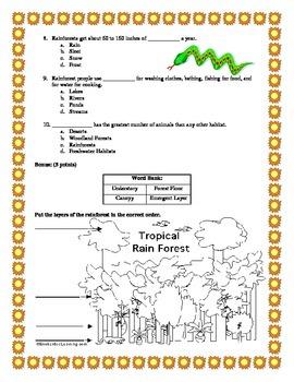 Rainforest Habitat Test