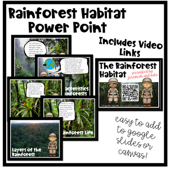 Rainforest Habitat Unit
