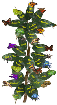 Rainforest Helpers Charts (Included in Rainforest: Classroom Setup Materials