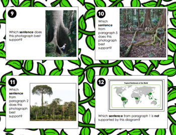 Rainforest Informational Text Diagrams Illustrations Task Card RI.3.7 RI.3.8