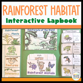 Rainforest Interactive Lapbook