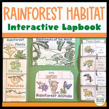 Rainforest: Interactive Lapbook