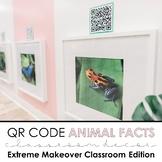 Rainforest & Jungle Animal QR Codes: Classroom Decor