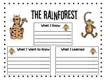Rainforest KWL