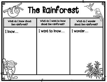 Rainforest KWW Graphic Organizer