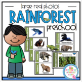Rainforest Large Real Photo Cards