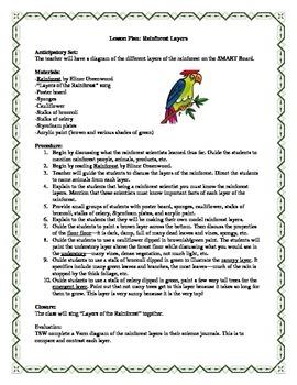 Rainforest Layers Lesson Plan